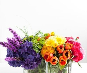 floral, nature, and pretty image