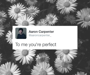 magcon and aaron carpenter image