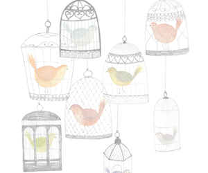 bird, drawing, and cage image