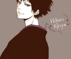 anime, katekyo hitman reborn, and hibari kyoya image