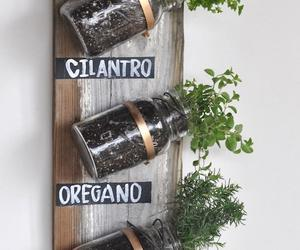 diy, plants, and herb image