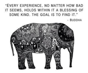 quotes, Buddha, and elephant image