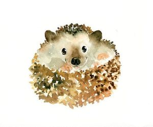 art, hedgehog, and watercolor image