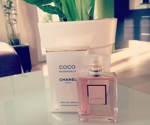 parfume image