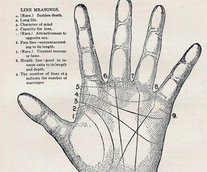 hand, hands, and lines image