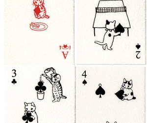 cat and cards image