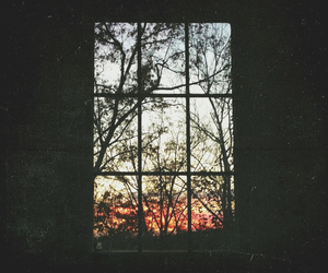 hipster, window, and nature image
