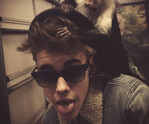 justin bieber, justin, and monkey image