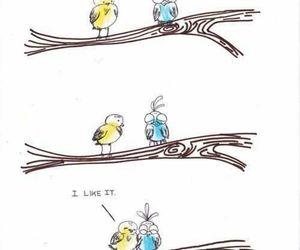 bird, weird, and like image