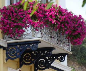 flowers, balcony, and travel image