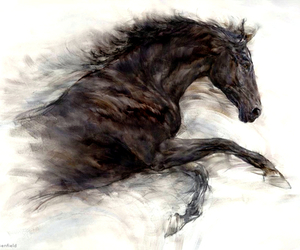 horse and drawing image