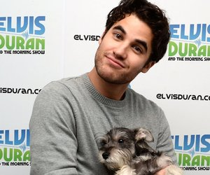 darren criss, glee, and dog image