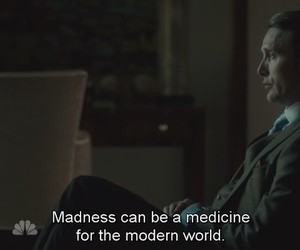 madness, quote, and hannibal image