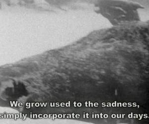 sad, sadness, and quote image