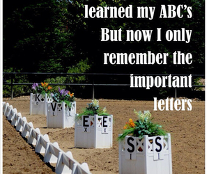 dressage, horse, and quote image