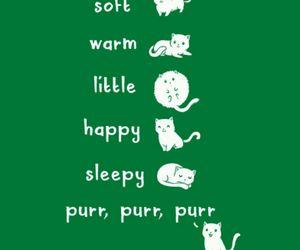 kitty, the big bang theory, and cute image