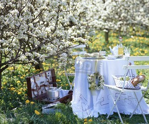 flowers, food, and outdoor image