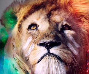 color, leones, and roar image