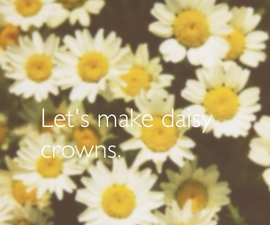crowns, daisy, and flower image
