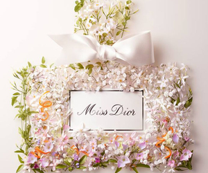 dior, flowers, and miss dior image