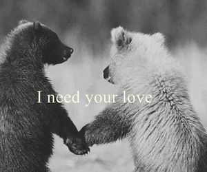 i need ur love and i need ur time image