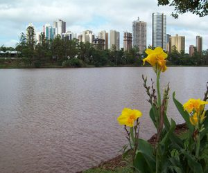 city, lake, and flower image