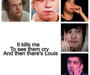 funny, louis, and niall image