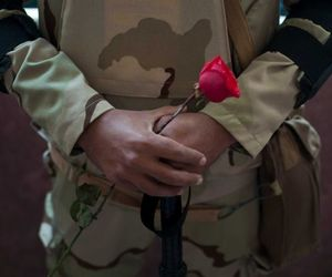 flower, love, and military image