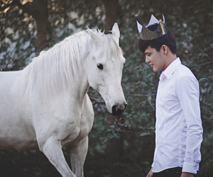 charming, crown, and horse image