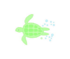 transparent, overlay, and turtle image