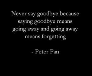 peter pan, forget, and quote image