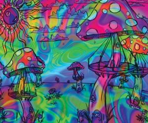 mushroom, psychedelic, and colors image