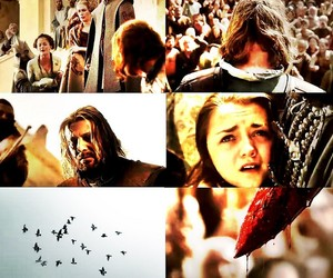 evss and game of thrones image
