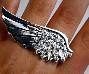 ring, wing, and fingers image