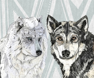 wolf, art, and illustration image