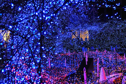 blue christmas christmas lights decorations holiday holidays inspiring picture on favimcom