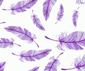 feather, background, and purple image