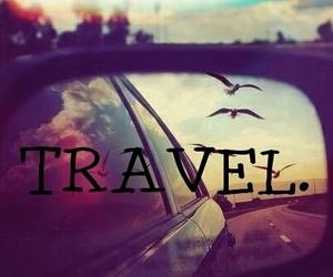travel, bird, and car image