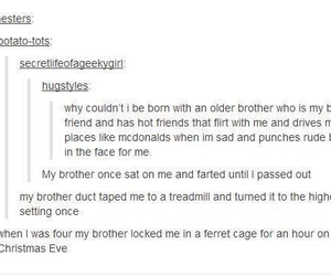 tumblr, brothers, and funny image