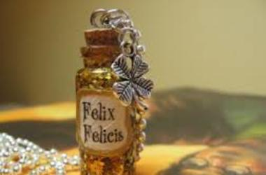 harry potter and felix felicis image