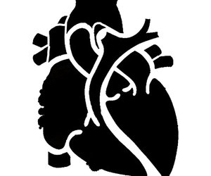 anatomical heart and stencil image