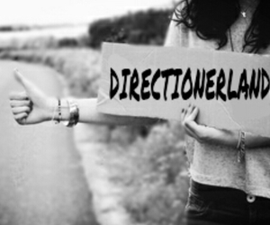one direction, 1d, and directionerland image