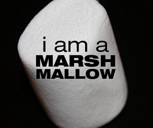 veronica mars image