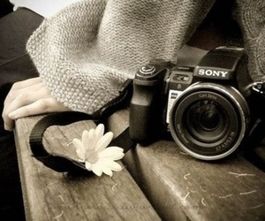 camera, photography, and flower image