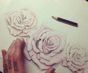 rose, drawing, and flowers image