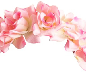 flowers, overlay, and pink image