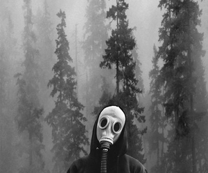 black and white, forest, and mask image