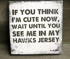 hawks, hockey, and jersey image