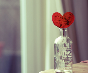 heart, love, and bottle image