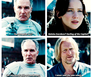 catching fire and haymitch image